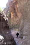 Laura hikes through lower Blue Tank Canyon.