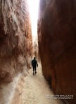 Chris hikes through upper Coyote Gulch.