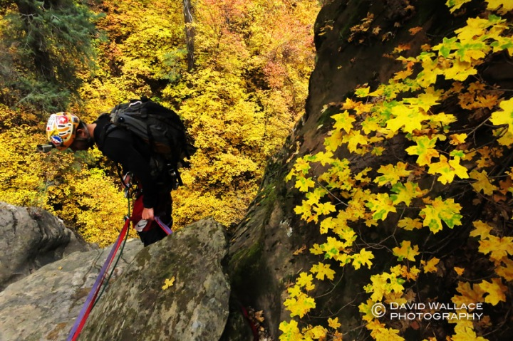 Surrounded by stunning foliage on the final rappel.