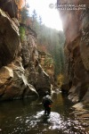 Eric wades through a section of narrows in the upper section of the West Fork of Oak Creek.