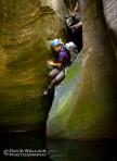 Barney Spring Canyon