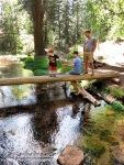 Wyatt crosses  bridge over Horton Creek as Brian and John look on.