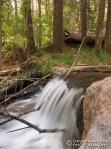Horton Creek.