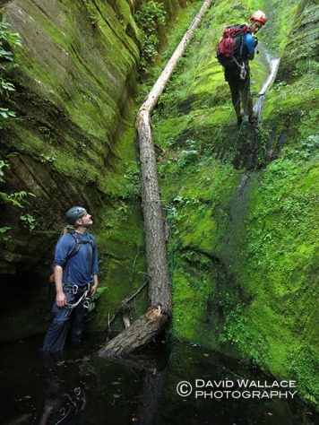 Kyle watches as Eric comes down mossy green walls.