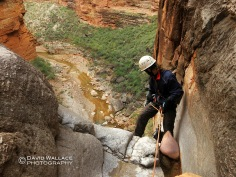 Pat starts the final rappel of Kanab Zero into Kanab Creek.