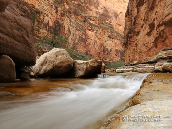 Kanab Creek flows at our campsite.