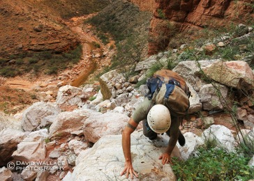Pat works the ascent out of Kanab Creek during the appoach to Whispering Falls Canyon.