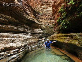 Brian wades through crystal clear water in Whispering Falls Canyon.