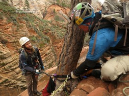 The final of a three rappel sequence to get into canyon floor of Behunin. We are committed at this point.